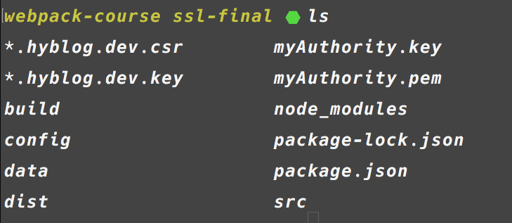 Lawrence Whiteside | Adding SSL to your Site